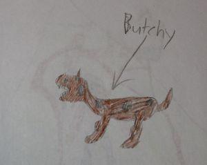 butchy